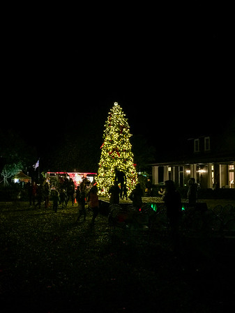 Winter Festival 2017