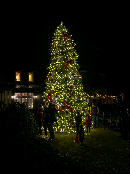 RiverTown Christmas Tree