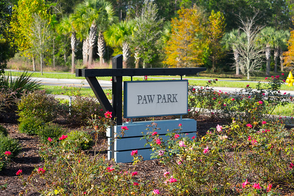 Paw Park