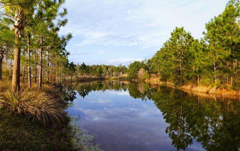 RiverTown Pond