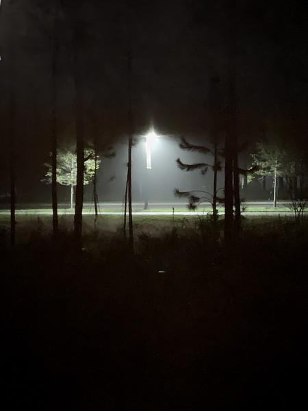Foggy Tonight