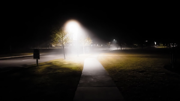 Foggy Evening Walk