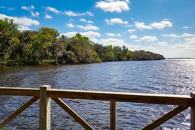 Look South on The St Johns River
