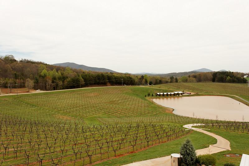 Frogtown Winery, Georgia