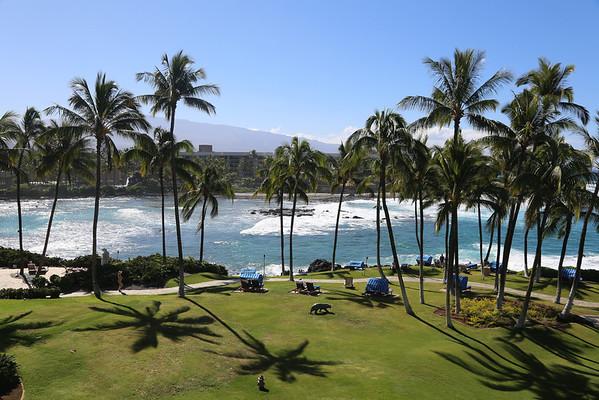 The Big Island (Hawaii)