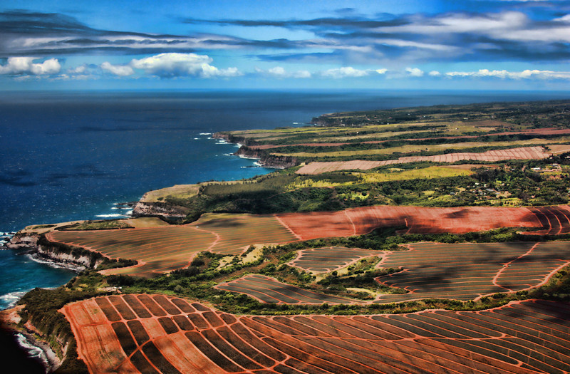 Farmland in Maui