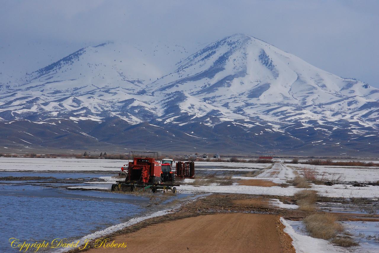 Spring snow and wet fields near Fairfield, ID