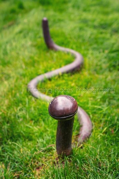 Copper Snake