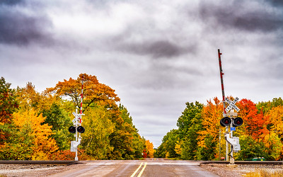 Autumn Crossing