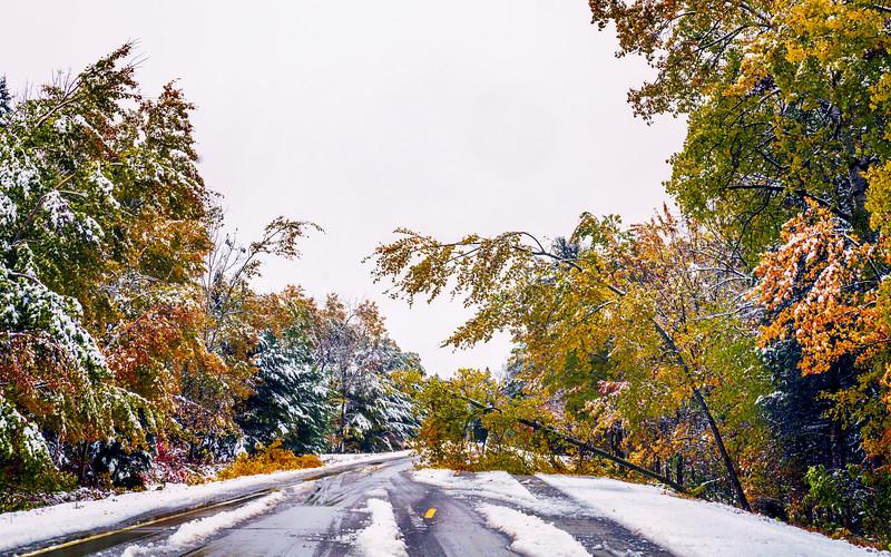 Autumnal Road Block