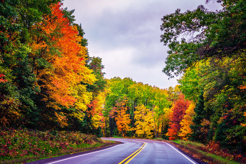 Driving into Autumn
