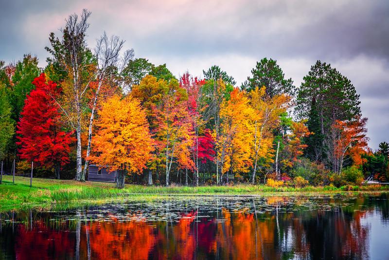 Fall, Coloured