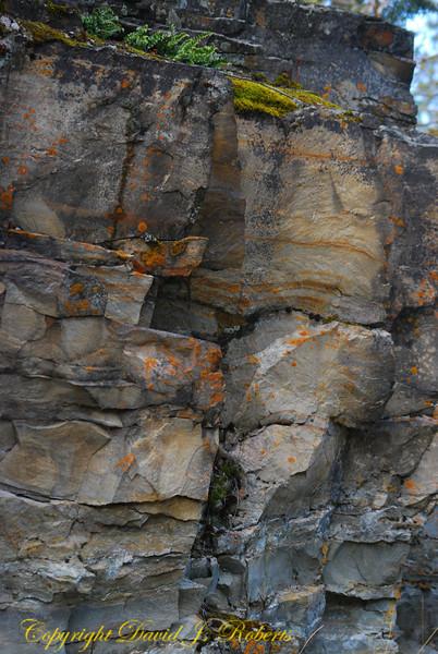Precambrian rocks near Kootenai Falls, Troy, Montana