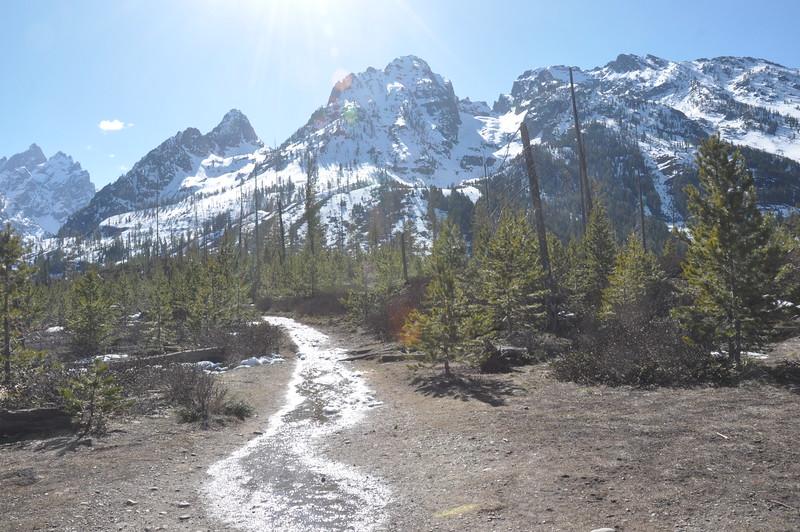 099  United States - Grand Tetons National Park