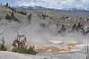 069  United States - Yellowstone National Park