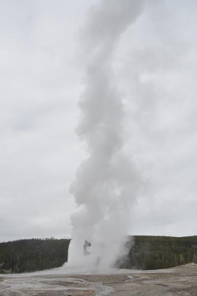 061  United States - Yellowstone National Park, Old Faithful