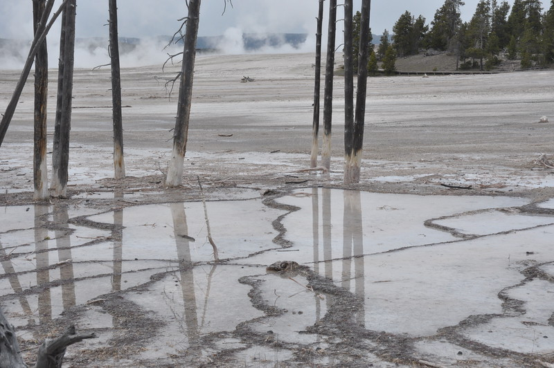 054  United States - Yellowstone National Park
