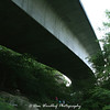 Hiking beneath the Linn Cove Viaduct - Blue Ridge Parkway