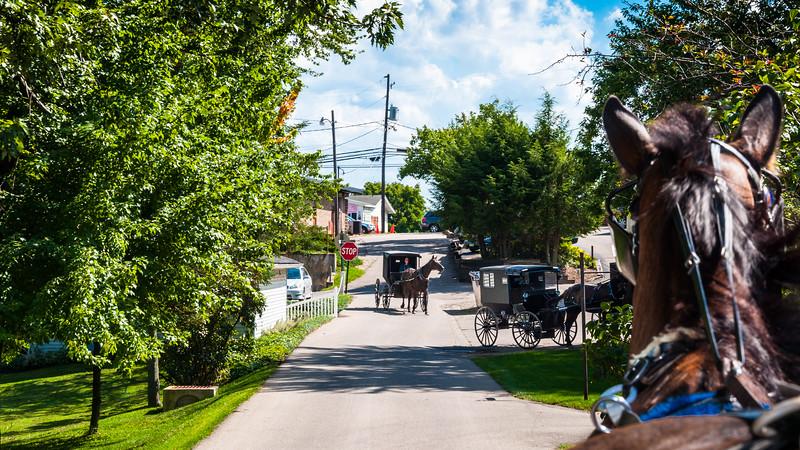 Amish Country, Ohio