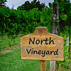 North Vineyard