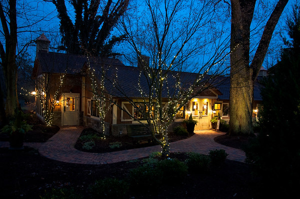 Night Photography -  Gervasi Vineyard