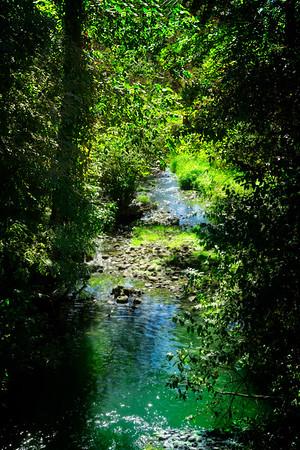Brook runs through Gervasi property
