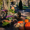 The Marketplace in the Fall