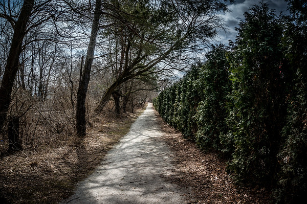 Middle Branch Trail