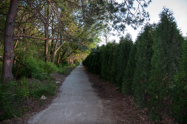 Trail follows East side of Gervasi Property