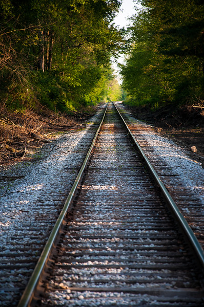 Train Tracks in the middle of my nature walk! Wheeling And Lake Erie