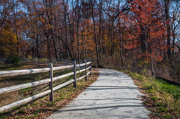 The Middle Branch Trail