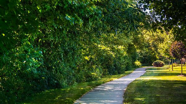 Price Park Walking Track