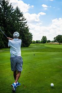 Golf Ball In Flight