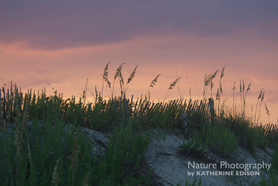 Sunset over the Dunes. Corolla, Outer Banks, North Carolina. 2012.