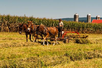 AmishCountry10