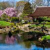 Shofuso Japanese House and Garden, Philadelphia, Pennsylvania.