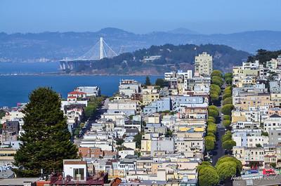 Top view of Lombard street neighborhood in San Francisco