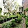 Garden next door to Eliza Thompson House