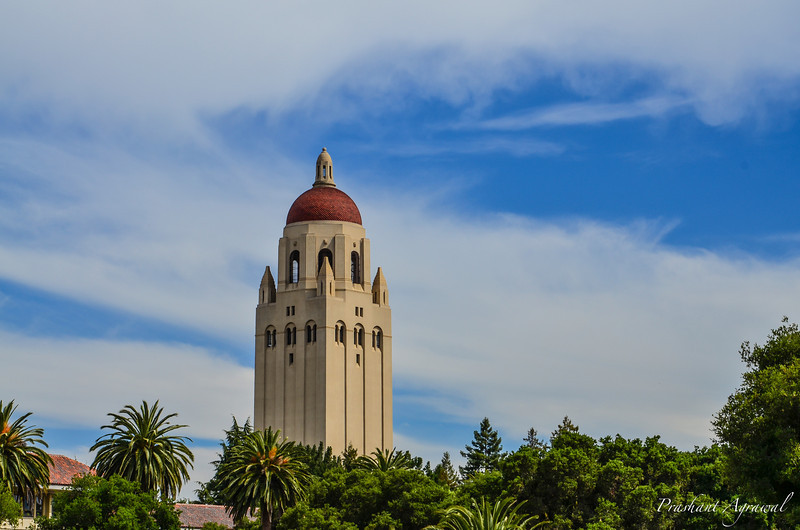 Portrait view of Hoover Tower in Stanford university campus on a sunny day with clear skies
