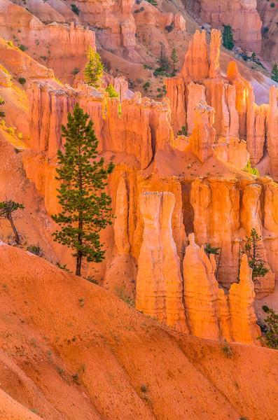 Bryce Canyon National Park, Utah (2012)