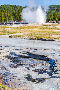Yellowstone National Park, Wyoming (2012)