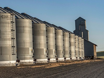 Massive new graineries have been built