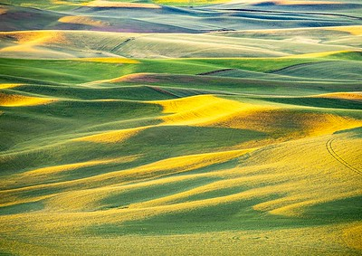 View from Steptoe Butte at Sunrise