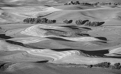 The Palouse: textures and shadows
