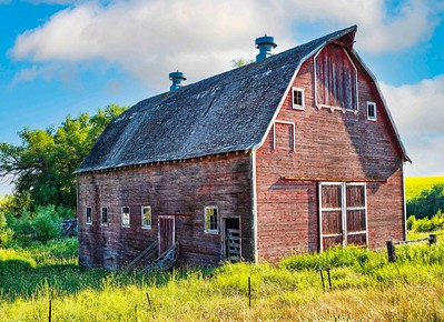 We spent a long time exploring this beautiful retired barn