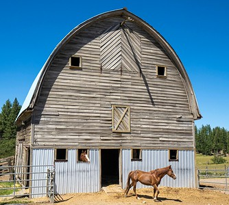 """Horses call this barn """"home."""""""