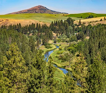 Palouse River and Steptoe Butte