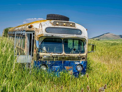 Old bus in weed field