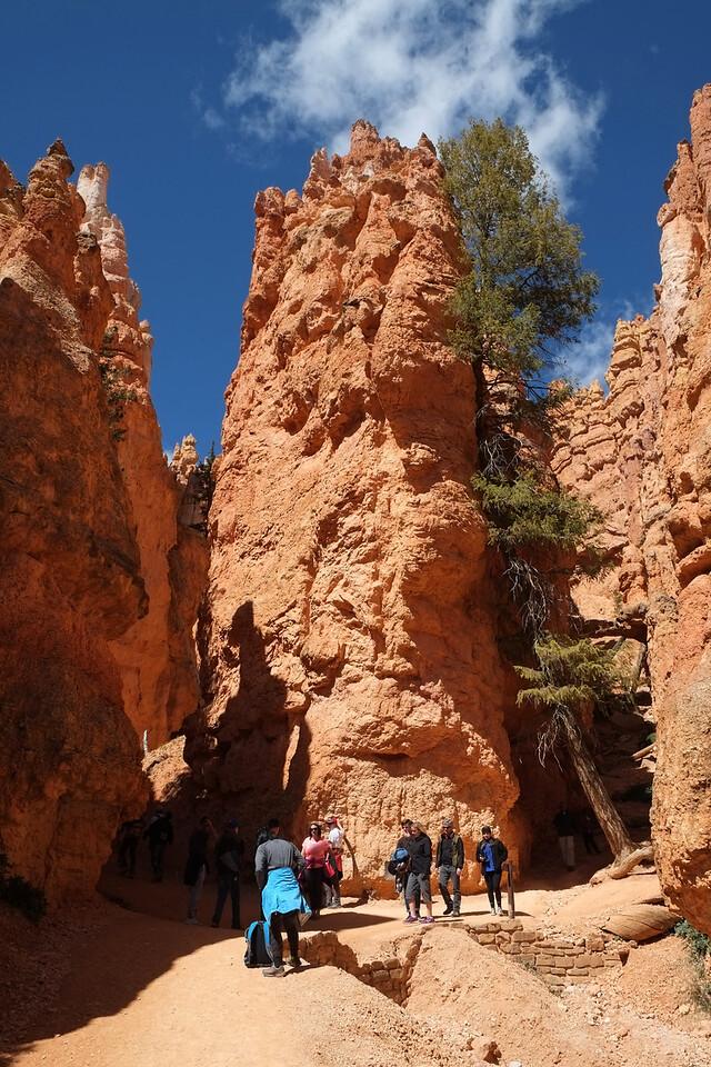 It is always impressive to walk through these narrow areas through the canyon.