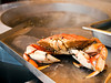 A fresh Dungeness crab, just boiled in hot water, is waiting on the stainless steel counter to be cracked and eaten.